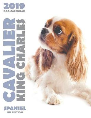Cavalier King Charles Spaniel 2019 Dog Calendar (UK Edition) (Paperback)