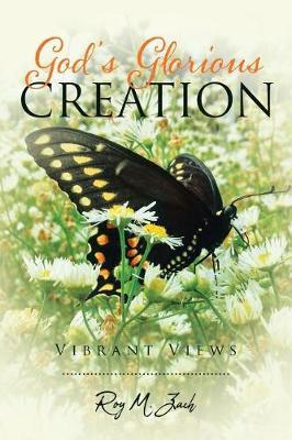 God's Glorious Creation: Vibrant Views (Paperback)