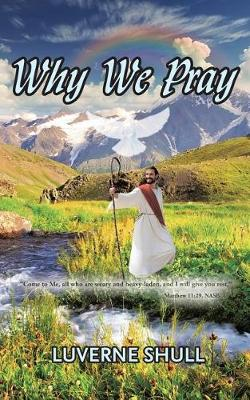 Why We Pray (Paperback)