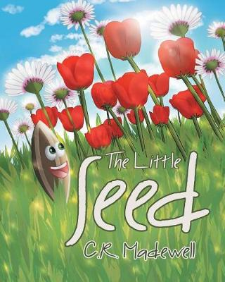The Little Seed (Paperback)