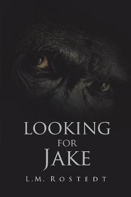 Looking for Jake (Paperback)