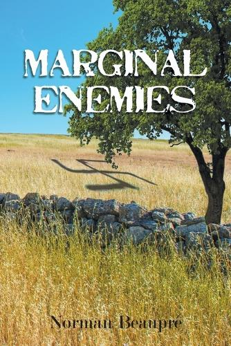 Marginal Enemies (Paperback)