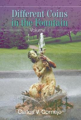 Different Coins in the Fountain: Volume 1 (Hardback)