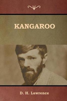 Kangaroo (Paperback)