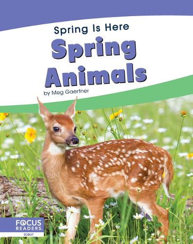 Spring Is Here: Spring Animals (Hardback)