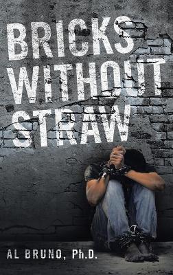 Bricks Without Straw (Hardback)