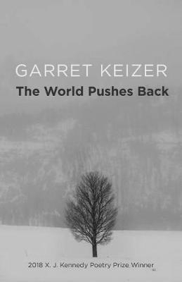 The World Pushes Back: Poems (Paperback)