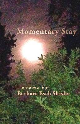 Momentary Stay: Poems (Paperback)