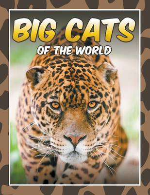 Big Cats of the World (Paperback)