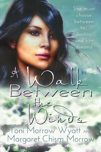 A Walk Between the Winds (Paperback)