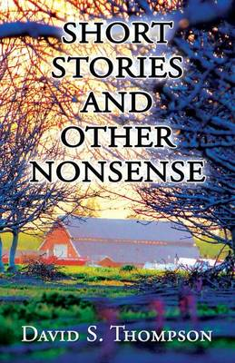Short Stories and Other Nonsense (Paperback)