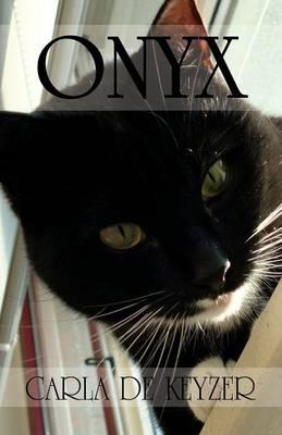 Onyx (Paperback)