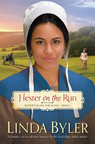 Hester on the Run: Hester's Hunt for Home, Book One (Paperback)