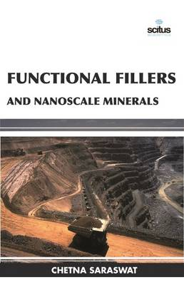 Functional Fillers and Nanoscale Minerals (Hardback)
