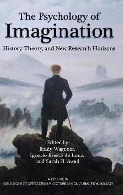 The Psychology of Imagination: History, Theory and New Research Horizons - Niels Bohr Professorship Lectures in Cultural Psychology (Hardback)