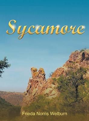 Sycamore (Hardback)