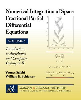 Numerical Integration of Space Fractional Partial Differential Equations: Volume 1 - Introduction to Algorithms and Computer Coding in R - Synthesis Lectures on Mathematics and Statistics (Hardback)