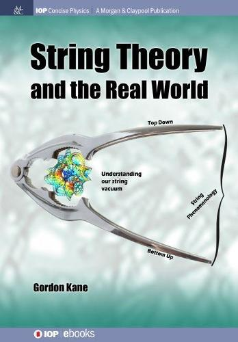 String Theory and the Real World (Paperback)