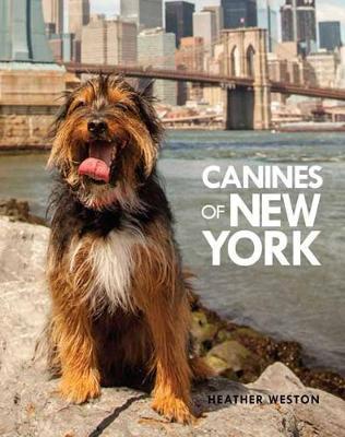 Canines of New York (Hardback)