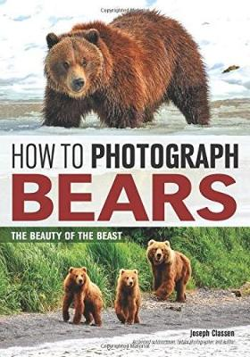 How To Photograph Bears: The Beauty of The Beast (Paperback)