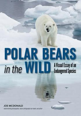 Polar Bears In The Wild: A Visual Essay (Paperback)