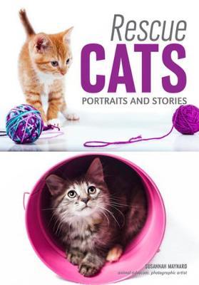 Rescue Cats: Portraits & Stories (Paperback)