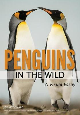 Penguins In The Wild (Paperback)