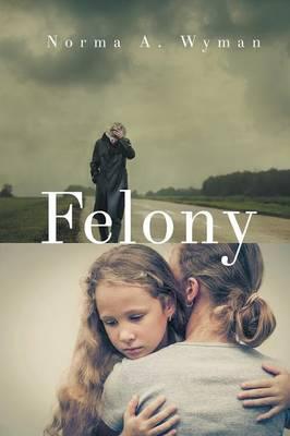 Felony (Paperback)