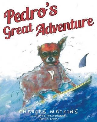 Pedro's Great Adventure (Paperback)