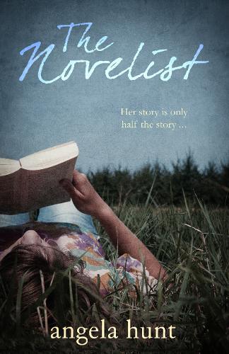 The Novelist (Paperback)