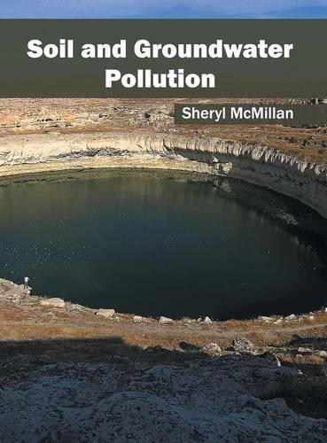 Soil and Groundwater Pollution (Hardback)