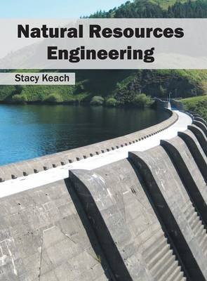 Natural Resources Engineering (Hardback)