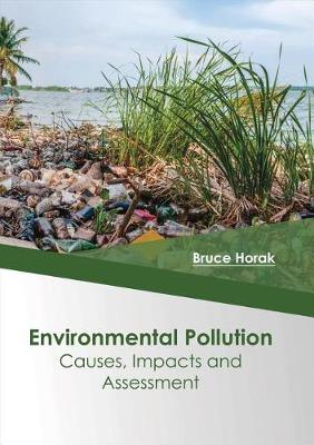 Environmental Pollution: Causes, Impacts and Assessment (Hardback)