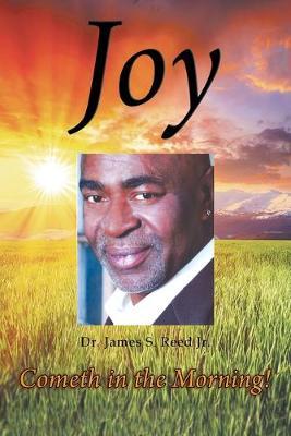 Joy Cometh in the Morning (Paperback)