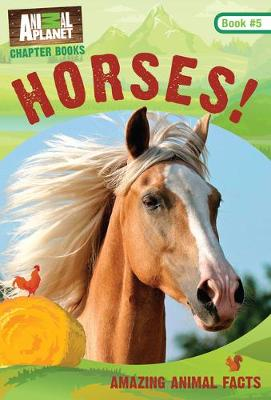 Horses!: Book #5 - Animal Planet Chapter Books (Paperback)