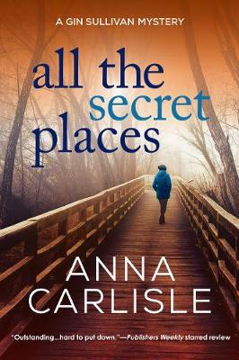 All the Secret Places: A Gin Sullivan Mystery (Paperback)