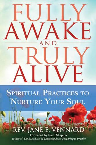 Fully Awake and Truly Alive: Spiritual Practices to Nurture Your Soul (Hardback)