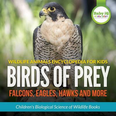 Wildlife Animals Encyclopedia for Kids - Birds of Prey (Falcon, Eagle, Hawks and More) - Children's Biological Science of Wildlife Books (Paperback)