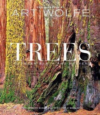 Trees: Between Earth and Heaven (Hardback)