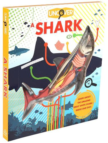 Uncover a Shark - Uncover (Hardback)