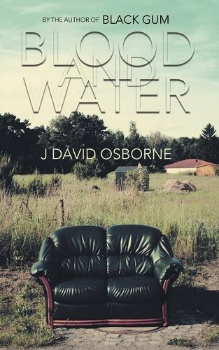 Blood and Water (Paperback)