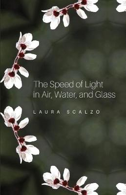 The Speed of Light in Air, Water, and Glass (Paperback)