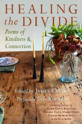 Healing the Divide: Poems of Kindness and Connection (Paperback)