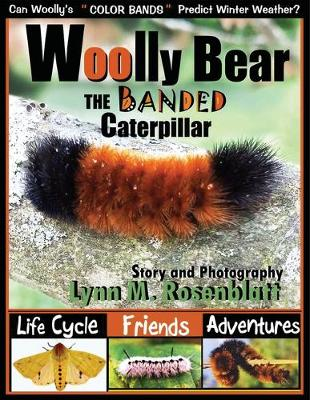 Woolly Bear the Banded Caterpillar: Life Cycle, Friends and Adventures (Paperback)