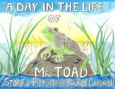 A Day in the Life of Mr. Toad (Paperback)