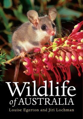 Wildlife of Australia (Hardback)