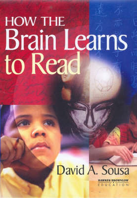 How the Brain Learns to Read (Paperback)