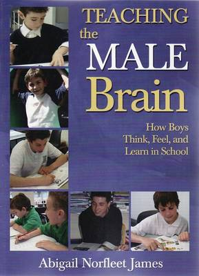 Teaching the Male Brain (Paperback)