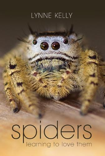 Spiders: Learning to love them (Paperback)