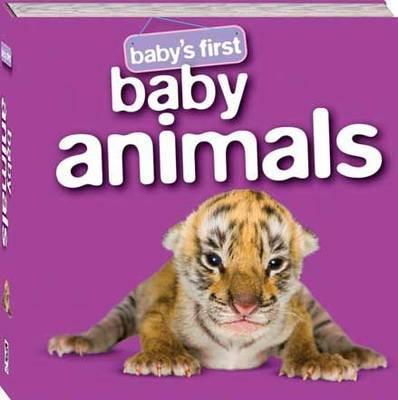 Baby Animals - Baby's First Padded: S3 (Hardback)